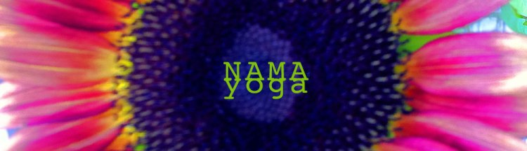 This image has an empty alt attribute; its file name is nama_wp_banner-1.jpg